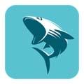 鲨鱼影视安卓app
